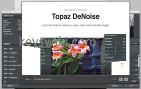 Topaz DeNoise AI 2.4.1 Crack Free Download 2021